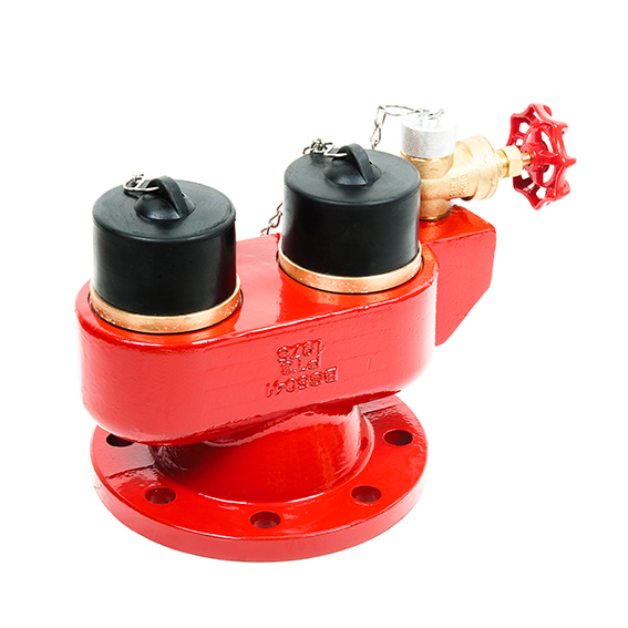 DRV008 2-Way Inlet Breeching Valve