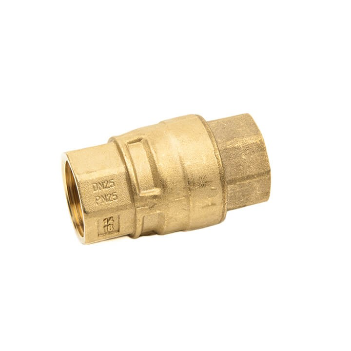 Brass Spring Check Valve (Threaded)