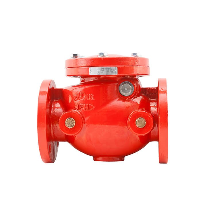 302 ANSI Swing Check Valve (Flanged)