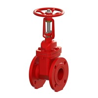 116FF OS&Y Gate Valve F4 series (Flanged)