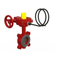 217 Butterfly Valve (Lugged)
