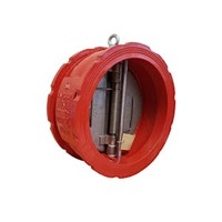303 Double Door Wafer Check Valve